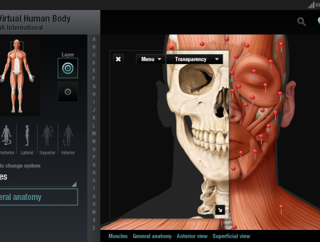 Virtual Human Body for Android