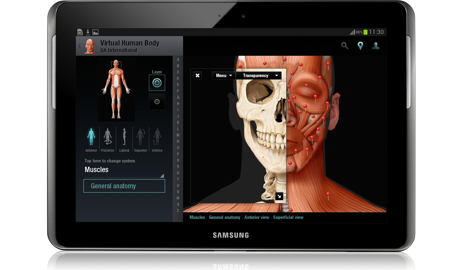 Virtual Human Body for Android - mintensive